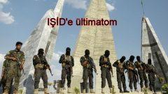 Suriyelilerden IŞİD'e operasyon