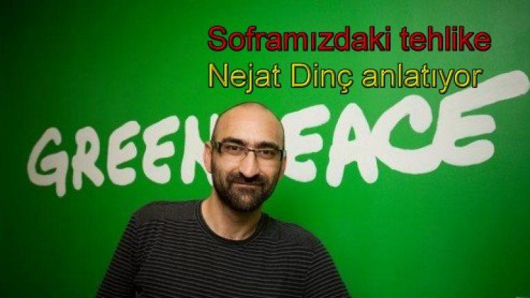 Greenpeace tavukçuları mahkemeye verdi!